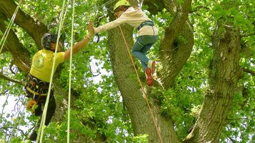 Instructor high fives student while safely climbing a tree
