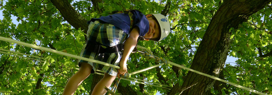 student-safely-scales-tree-using-ropes